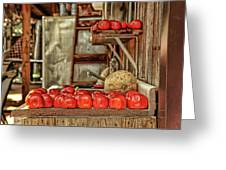 Ripe Tomatoes Greeting Card