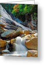 Ripley Falls Cascading Light Greeting Card by Shell Ette