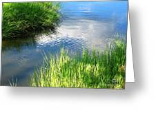 Clear And Gentle Flow Greeting Card
