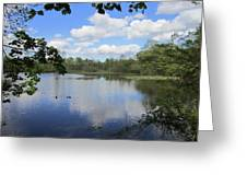 Ripples Of Land And Water Greeting Card