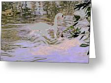 Ripples Subdued Greeting Card