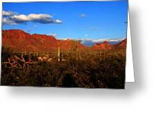 Rising Moon In Arizona Greeting Card