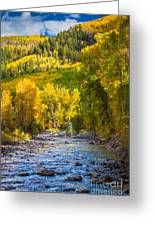 River And Aspens Greeting Card