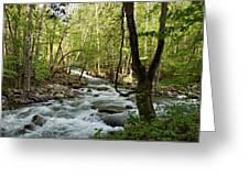 River At Greenbrier Greeting Card