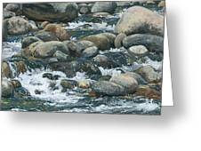 River At Sierra Subs Greeting Card