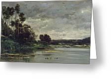 River Bank Greeting Card