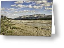 River Bed In Denali National Park Greeting Card