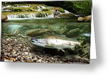 River Chrome Greeting Card
