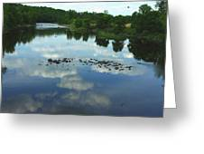 River Cloud Reflection Greeting Card