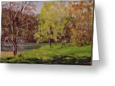 River Forks Spring 2 Greeting Card