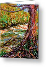 River Hafren In September Greeting Card