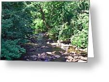 River In August Greeting Card