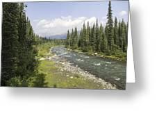 River In Denali National Park Greeting Card