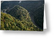 River In Forest Mountains Greeting Card