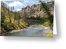 River In Shoshone Greeting Card