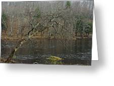 River In The Spring Greeting Card