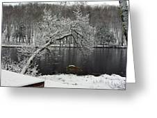 River In The Winter Greeting Card