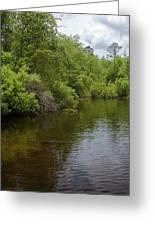 River Landscape Greeting Card