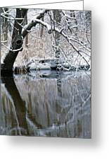 River Reflection 4 Greeting Card
