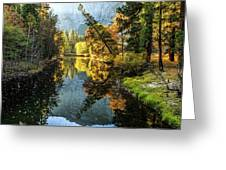 River Reflections Greeting Card