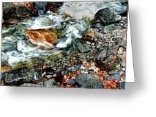 River Rock Leaves Greeting Card