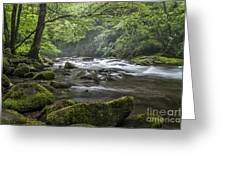 River Runs Free. Greeting Card