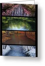 River Seasons Greeting Card by Susan Jenkins