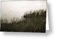 River Shore Greeting Card