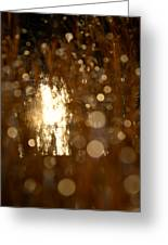 River Sparkle Greeting Card
