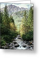 River Stream In Mountain Forest Greeting Card