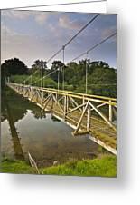 River Teviot  Greeting Card