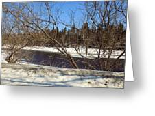 River Through The Branches Greeting Card