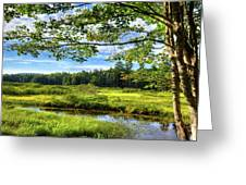 River Under The Maple Tree Greeting Card