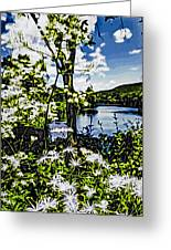 River View Through Flowers. On The Bridge Of Flowers. Greeting Card