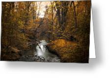 River Views Greeting Card