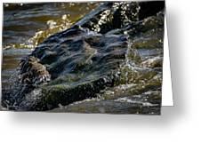 River Washed Rock Greeting Card