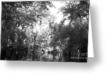 River Wooded Greeting Card