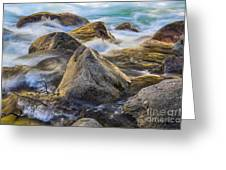 Riverbank Greeting Card