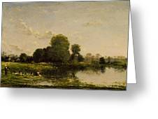 Riverbank With Fowl Greeting Card