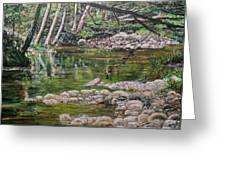 Rivers Of The Big Sur Greeting Card