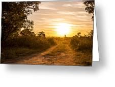 Road In Botswana Greeting Card
