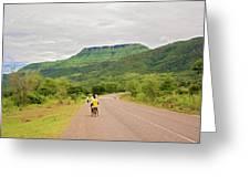 Road In Khondowe, Malawi Greeting Card