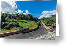 Road In Park Greeting Card