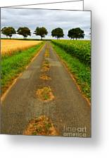 Road In Rural France Greeting Card