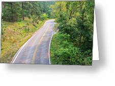 Road In The Black Hills Greeting Card