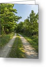 Road In Woods 1 F Greeting Card