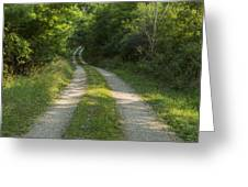 Road In Woods 1 H Windy Greeting Card