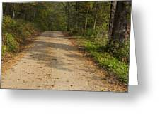 Road In Woods Autumn 2 A Greeting Card