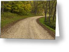 Road In Woods Autumn 3 B Greeting Card