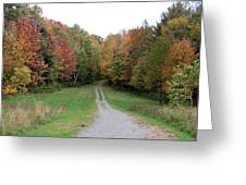 Road Less Traveled Greeting Card by George Jones
